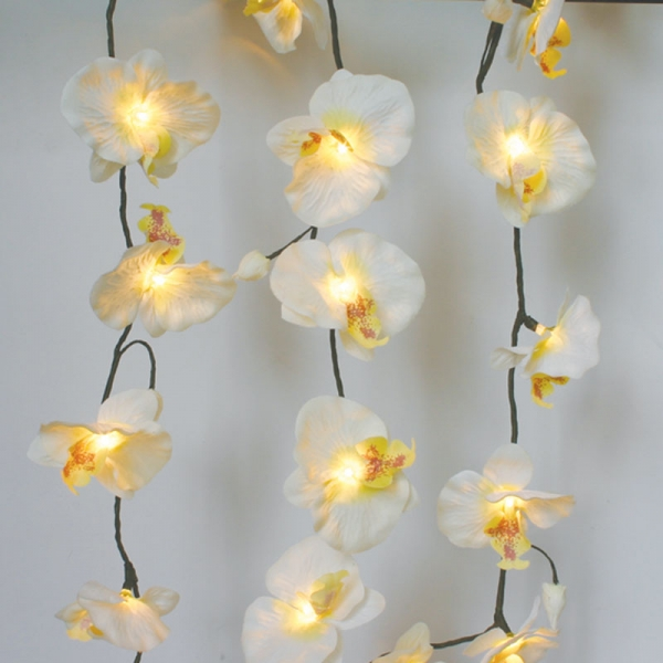 Orchid Curtain